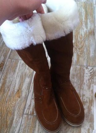 Стильные высокие зимные сапоги из натуральной замши и натурального меха на платформе 40