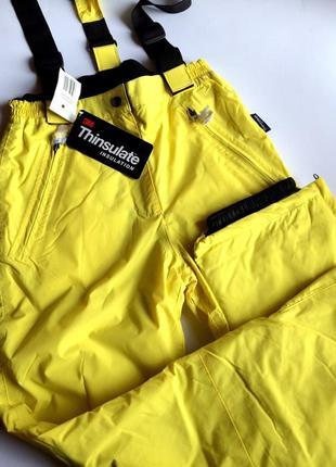 Лыжные штаны на тинсулейте bloem германия, зимний комбинезон thinsulate