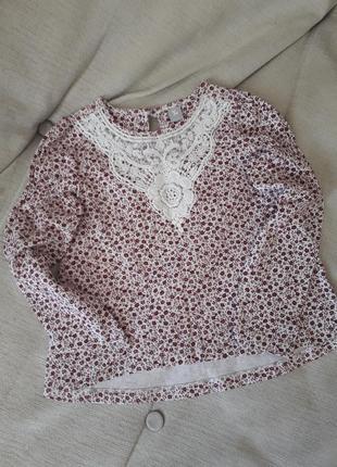 Кофта, блузка, реглан, рубашка.
