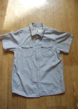 Рубашка 12-13 лет, 158 см, rebel, хлопок