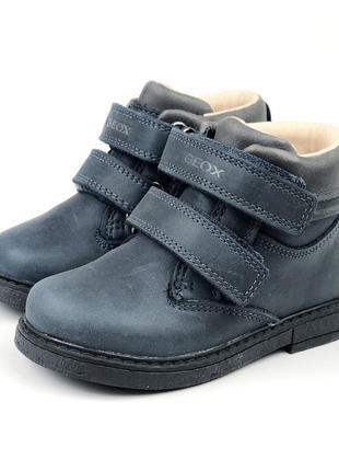 Утепленные кожанные ботиночкиgeox (италия)