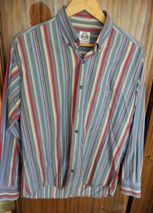 Рубашка carlo puccini в полоску