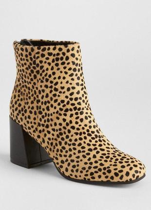 Ботинки полусапожки gap под мех гепарда натуральная кожа