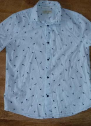 Zara рубашка зара на 11-12 лет