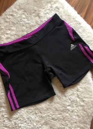 Спортивные шорты в зал adidas размер м