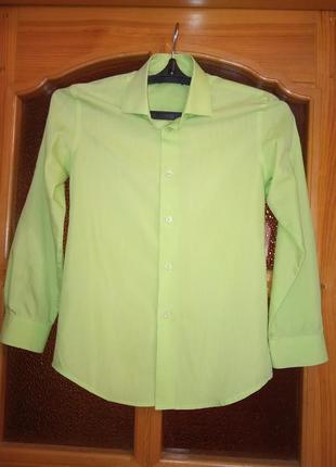 Турция,шикарная,рубашка,сорочка,хлопковая рубашка,х/б сорочка