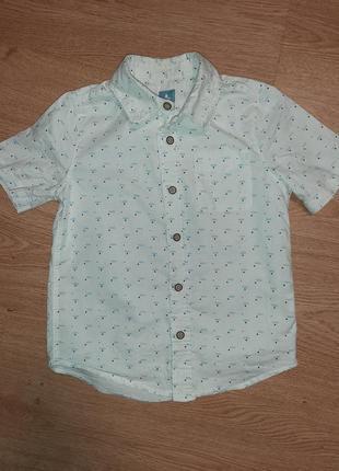 Стильна сорочка babygap