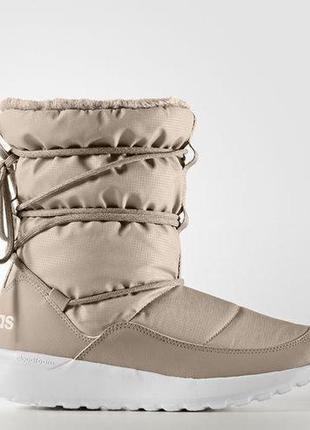 Женские сапоги adidas neo cloudfoam race winter(артикул:aq1643
