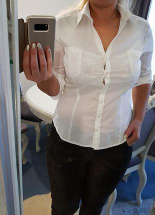 Блузка,рубашка h&m
