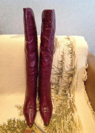Шикарные итальянские сапоги (ботфорты), бренда glossi р. 38