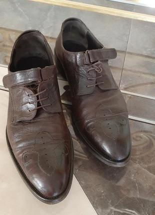 Туфли мужчкие   carlo pazolini