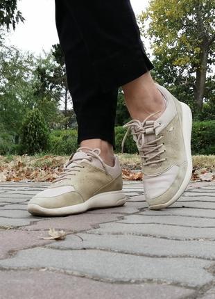 Натуральные качественные кожаные кроссовки, вставки замш, бежевый, золотой, люкс, бренд