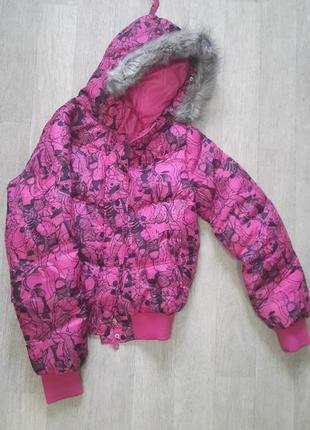 Осенняя куртка фирмы terranova м