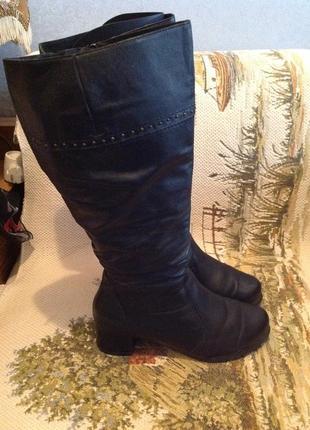 Кожаные, утепленные сапоги на полную голень, бренд elegance, р. 40 (39,5)