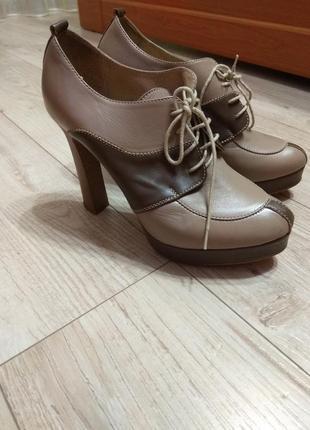 Шкіряні туфлі фірми santini.