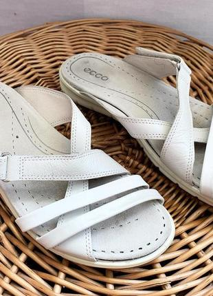 Кожаные сандалии босоножки шлёпанцы ecco кожа