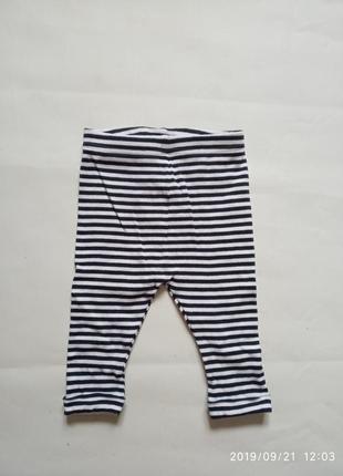 Трикотажные штаны лосины