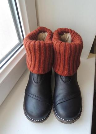Кожаные деми еврозима ботинки сапоги el naturalista р.37