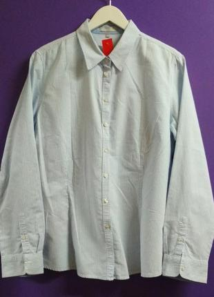 Мужская классическая рубашка, сорочка marco pecci