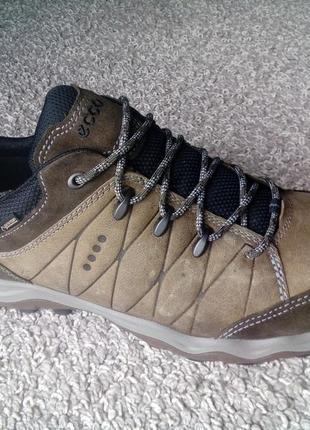 Бомбезні трекінгові кросівки