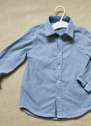 Рубашка мальчику frenchie