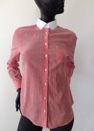 Рубашка massimo dutti 40