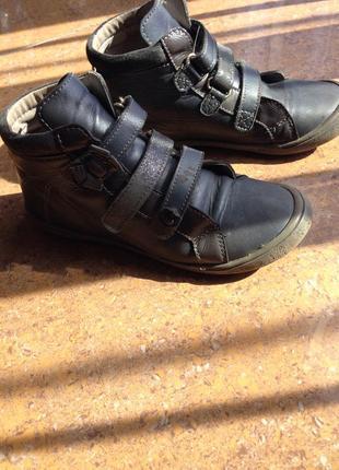 Черевики ботинки деми