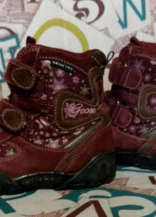 Термо ботинки, сапоги, ботинки, geox, p.28