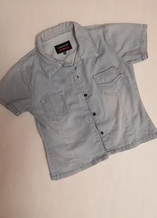 Приятная джинсовая женская рубашка  comodor, jeans&indigo, размер м