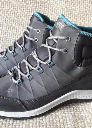 Кросівки шкіряні оригінал ecco aspina 838513 розмір 36,37,40