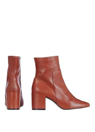 Сапоги topshop - ankle boots