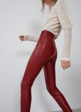 Кожаные штаны zara3 фото