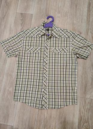 Рубашка с коротким рукавом subrosa