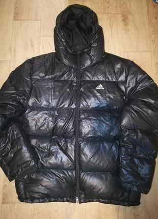 ‼️зимняя куртка adidas‼️