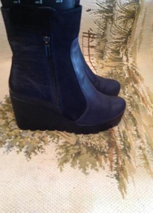 Новые, кожаные, теплые сапоги (ботинки, полусапоги) бренда natali, р. 39