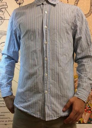 Рубашка в полоску cedar wood state