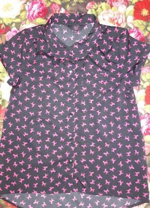 Рубашка в пудельках140-146 см