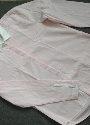 Gas базовая рубашка прямой крой хлопок