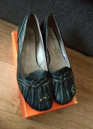 Туфлі berloni