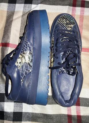 Кожаные кроссовки анималистический принт  кроссовки на платформе кожаные туфли ботинки