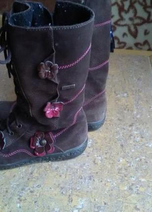 Сапоги чоботи деми