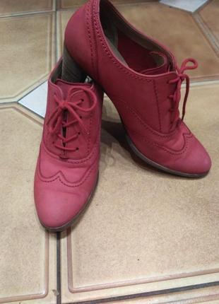 Коралловые набуковые туфли весна-осень р-р 5 (1/2) бренд gabor