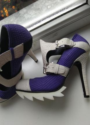 Туфлі tucino