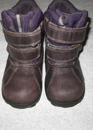 15,5 см стелька, зимние термо ботиночки ecco экко с гортексом сапоги