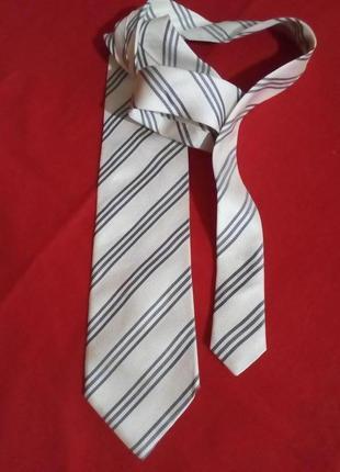 Мужской галстук dikarpa
