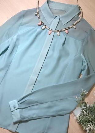 Новенькая рубашка (s)