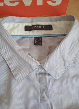 Базовая рубашка в мелкую полоску