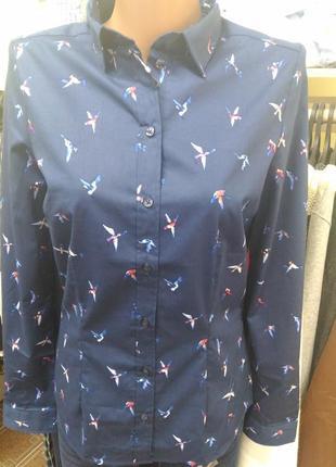 Женская блузка esmara, 36, 38