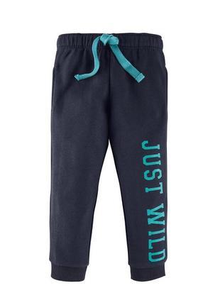 Спортивные штаны на флисе lupilu
