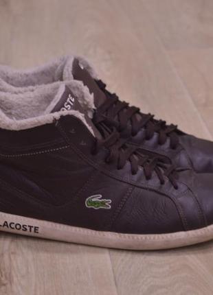 Lacoste мужские кожаные кроссовки зимние оригинал коричневые
